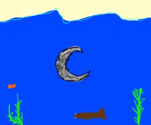 Underwater Moon