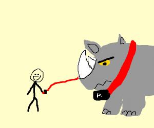 Pet Rhinoceros