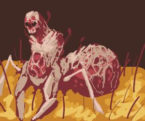 fleshy spider-skeleton