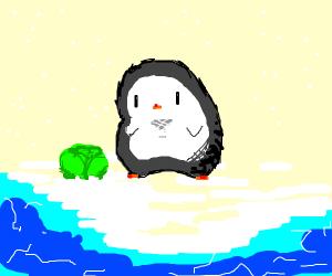 Penguin carrying Lettuce