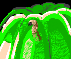 maggot eating green jelly
