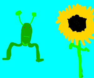 Alien looks at pretty sunflower