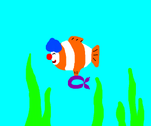 clown clown fish