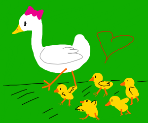 Mama duck with her ducklings