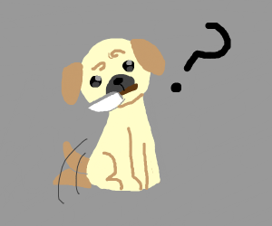 Doggo holds dagger innocently