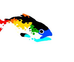 Colorful Salmon
