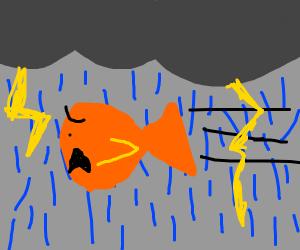 Fish flying thru a thunderstorm