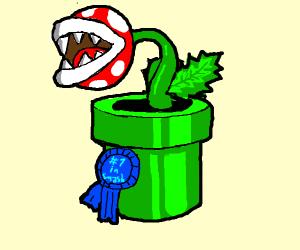 mario canivor plant wins contest
