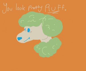 White furry dog compliments you (with a pun!)