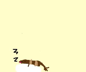 Ferret Dreaming
