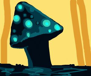 happy mushroom in the rain