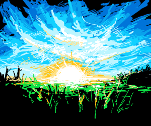 sunrise at a field