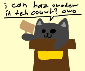 Judge Cat