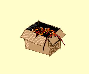 Centipede in a Box