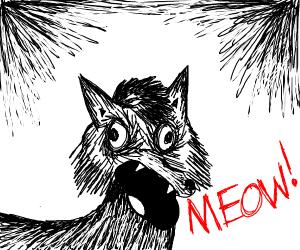 uhh, meow?