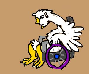 Man-bird on wheelchair