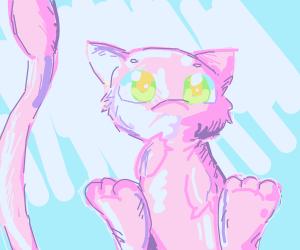 Mew the pokemon stares at you