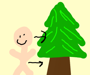 person makes frieds with a tree