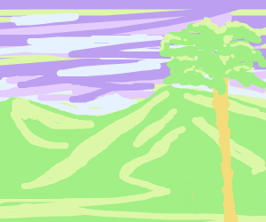 palm tree in mountains