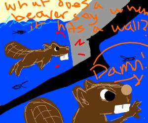 """A beaver shouting """"Damn!!"""""""