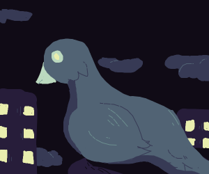 A pigeon lurking at night...