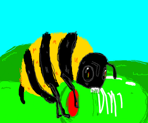 bee eating an olive with hills in the back