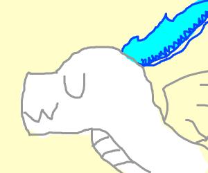 UwU Dragon