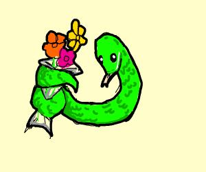 snake giving somebody flowers