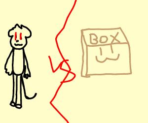 Monkey vs Cardboard Box