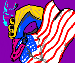 'the D' shushing, wrapped in the us flag