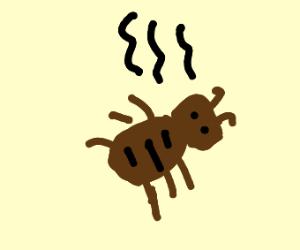 Smelly Bedbug