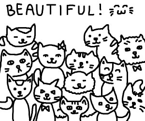 Every cat is beautiful. Every single one.