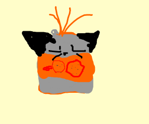 cat made out of orange soda