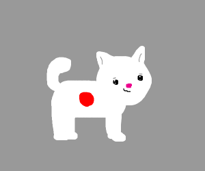 Japan flag cat