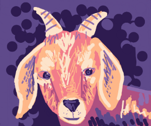 a goat with horns
