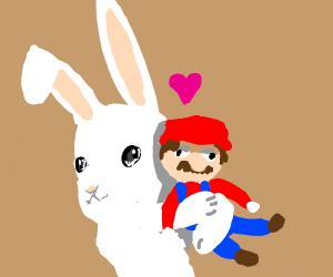 Clown rabbit loves Mario