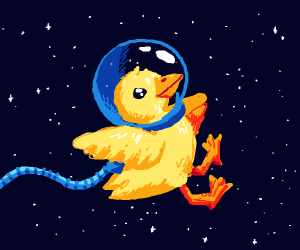 space duck