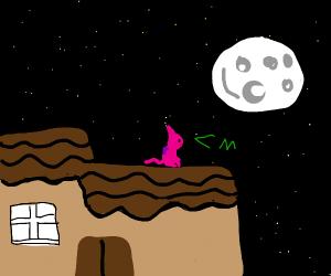 Pink cat stuck on roof; admires moon