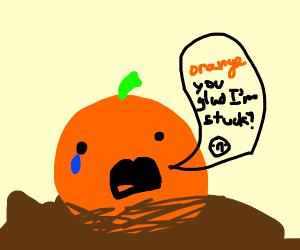 orange in mud