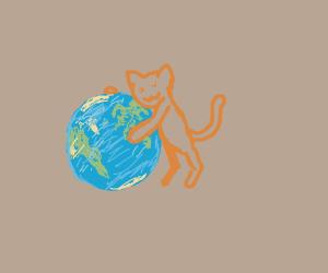 cute cat hugging the earth