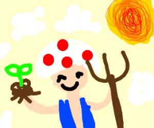 farmer toad (Mario)
