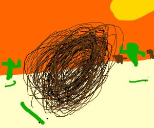 Tumbleweed in Desert