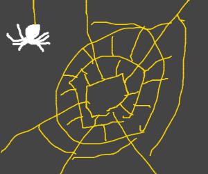 a white spider