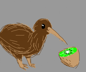 Kiwi bird is cannibal, eats a kiwi fruit