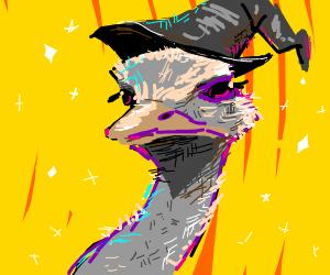 Unique Ostrich