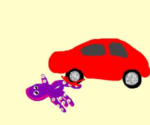A car runs over an octopus