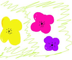 Flowers: yellow, purple, magenta