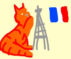 Cat knocks over Eiffel Tower