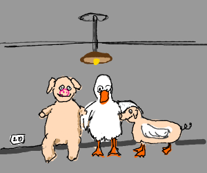Pig and duck have inter-species relations