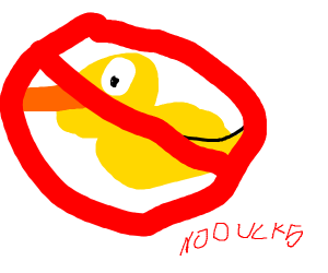 NO DUCKS